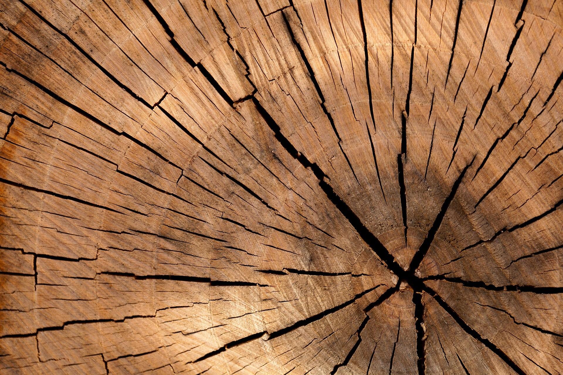 lumber-84678-1920.jpg