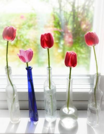 spring-645328-960-720.jpg